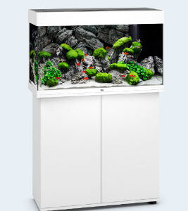 """real classic: JUWEL RIO 125 LED Aquarium The RIO 125 LED is the smallest aquarium in the RIO range. With its compact surface area of 81 x 36 cm and classic rectangular design, the RIO 125 LED will fit perfectly into any design scheme. Its safety base frame ensures especially safe positioning and allows you to set up your aquarium easily, with no need for special supports. Painstaking workmanship from Germany, top-quality materials and perfectly tuned technology guarantee the very best of quality and safety, meaning a long service life for your RIO 125 LED. Multi Lux LED/ Lighting Brilliant luminosity and excellent plant growth are what you get with the state-of-the-art Multi lux LED lighting technology from JUWEL. The replaceable 590 mm DAY and NATURE LED tubes create an optimum light spectrum, while saving up to 50% of energy in comparison to T5 at the same time. The Multi Lux LED lighting system for the RIO 125 LED means that you can work on your aquarium in comfort, even when the lighting is switched on. The ultrasound-sealed light unit is 100 percent waterproof and fulfils the stringent European safety standards. Bio flow M/ Filter System For optimum filtering, the RIO 125 LED is fitted with a high-performance Bio flow M. This internal filter combines efficiency with safety and forms the centrepiece of any JUWEL aquarium. It works on the principle that """"The water should stay in the aquarium!"""" and is the safest way of filtering an aquarium. The Bio flow M comes fitted with five high-performance filter media and a quiet yet powerful Ecco flow 500 circulation pump. Aqua Heat 100 W/ Automatic-Heater The 100 Watt JUWEL adjustable heater, which is perfectly embedded in the water circulation in the Bio flow M filter system, ensures the right temperature in the RIO 125 LED."""