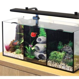 Create a Betta world with these stylish little tanks purpose designed to accommodate Bettas or water creatures with similar requirements such as Shrimp or Dwarf Gourami. As long as the water parameters and temperature requirements are compatible you can keep up to 3 different species separately in the Trio. Design the aqua-scape differently in each compartment and enjoy the scenery of up to 3 different aqua worlds in one tank. Kit Contains - Aquarium with cover glass LED Light Filter Heater