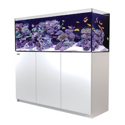 """The new REEFER™ XL 525 model is 7.5cm wider than the regular REEFER™ 350 & 450, enabling hobbyists to create substantial aquascaping while still providing plenty of water volume and space. It also feature's proportionately larger sumps with an extra 3cm water height in the skimmer chamber. Red Sea's REEFER™ series of Reef Systems, provide advanced hobbyists with a solid foundation for building a fully featured reef or marine aquarium. The REEFER™ series combines a contemporary, rimless, ultra-clear glass aquarium with a stylish cabinet and a comprehensive water management system, including a professional sump with integrated automatic top-up, and Red Sea's unique silent down-flow system. Incorporating technologies originally developed for Red Sea's all-in-one MAX® coral reef systems, the REEFER™ series is designed for ease of operation while enabling the advanced hobbyist to install an unlimited choice of lighting, filtration, circulation and controllers to create a uniquely customised system. Features of the Red Sea REEFER™ include: Rimless, ultra-clear, bevelled edge glass aquarium Elegant marine-spec cabinet Professional sump with constant height skimmer chamber and micron filter bags Silent, regulated down-flow system with emergency overflow Integrated automatic top-up system with reservoir Assembly-ready piping – no gluing required REEFER™ Specification REEFER™ aquariums are constructed from thick, bevelled-edge, ultra-clear glass to support their elegant and modern rimless design. The aquarium sits on a recessed base that """"floats"""" it above the cabinet, which seamlessly follows the contour of the glass.The marine-spec laminated cabinet that houses the sump, (and in the larger models also includes a dedicated, vented space for chillers) is smartly finished with weatherproof, epoxy-painted doors. REEFER™ Water Management System Removable surface-skimming combs surround the top of the centrally located overflow box that houses the down-pipe, sump return pipe and t"""