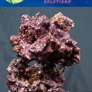 Real Reef™ Rock is a made of 100% natural marine friendly ingredients. Its components are made of the same building blocks which wild coral and living reef rock are composed of. The ingredients are not taken from the ocean and as a result there is zero environmental impact to the world's coral reefs or marine habitat.