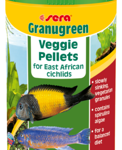 Sera Granugreen is the staple food consisting of carefully manufactured granules for smaller cichlids that mainly eat plants and periphyton. This includes many of the East African cichlid species.
