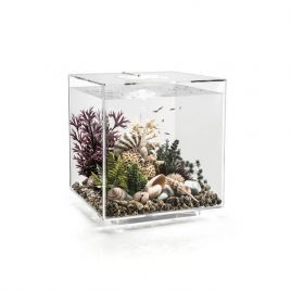 The BiOrb Cube Aquarium is a complete all-in-one package that features everything you require to get setup quickly and easily. The BiOrb Cube Aquarium Includes: MCR Lighting: The MCR (multi-colour remote) Lighting is the perfect addition to your aquarium, and features 16 pre-set RGB colours which can be changed remotely along with the brightness of the lights aswell. The LED Lighting unit is extremely energy efficient and can last up to 50,000 hours, great for creating an elegant aquatic display in your home. Air Pump: The Air Pump with Air Stone provides your aquarium with plenty of aeration, helping to create an Oxygen rich environment for your beloved fish. Water Treatment: