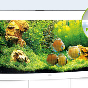 With its curved front panel, the VISION 260 LED is an expression of elegance and masterfully sets the stage for the living image of an aquarium. At 121 cm wide, the VISION 260 LED offers you a lot of room for creativity. The safety base frame ensures especially safe positioning and allows you to set up your aquarium easily, with no need for special supports. Painstaking workmanship from Germany, top-quality materials and perfectly tuned technology guarantee the very best of quality and safety, meaning a long service life for your VISION 260 LED. Choose from Black, White, Dark Wood and Light Wood.