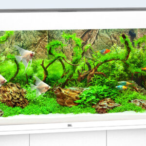 Timeless, elegant design, perfect workmanship and innovative technology – at a width of 120 cm, you can simply enjoy a perfect view. Measuring 121 x 41 cm and with its classic rectangular design, the RIO 240 LEDfits into any home without compromising on style. Its safety base frame ensures especially safe positioning and allows you to set up your aquarium easily, with no need for special supports. Painstaking workmanship from Germany, top-quality materials and perfectly tuned technology guarantee the very best of quality and safety, meaning a long service life for your RIO 240 LED Choose from black, dark wood, light wood and white.