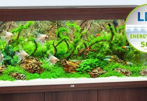 """Built in Filtration and Heater For optimum filtering, the RIO 350 LED is fitted with a high-performance Bioflow L. This internal filter combines efficiency with safety and forms the centrepiece of any JUWEL aquarium. It works on the principle that """"The water should stay in the aquarium!"""" and is the safest way of filtering an aquarium. The Bioflow L comes fitted with five high-performance filter media and a quiet yet powerful Eccoflow 1000 circulation pump. The 300 Watt JUWEL adjustable heater, which is perfectly embedded in the water circulation in the Bioflow L filter system, ensures the right temperature in the RIO 350 LED. Because it uses top-quality silver contacts and shock-proof borosilicate glass, JUWEL adjustable heaters meet the highest standards in both function and safety and, as you would expect, are TÜV/GS certified."""