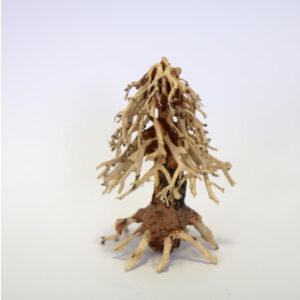 Mopani gorgeous Wooden Christmas Tree Ornament Approx size 10 x 20 x 15cm MT033