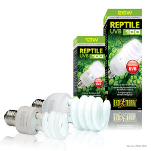 The Exo Terra Reptile UVB100 Compact Lamp emits optimal levels of UVB, similar to that of shady environments such as rain forests or other tropical locations, making it ideal for all tropical and sub-tropical reptiles. The optimal Vitamin D3 yield index ensures vitamin D3 photosynthesis to aid calcium absorption and prevent metabolic diseases. - Ideal for all tropical and sub-tropical reptiles - Optimal levels of UVB - Provides necessary UVB rays for optimal calcium metabolism