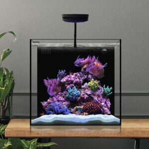 The Waterbox Aquariums Cube is one of our most popular all-in-one aquarium systems for both freshwater and saltwater aquaria. An all-in-one* aquarium that captures more of what you love. The CUBE was designed so you can keep more in your aquarium with less. Available from 10 to 20 gallons, the CUBE delivers an aquatic environment for novice and professional aquarium keepers.