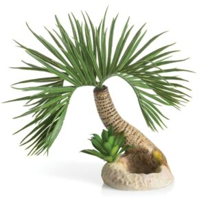Biorb Seychelles Palm Tree Small This gorgeous Biorb Seychelles Palm Tree will look amazing in any aquarium, it is suitable for Cube, Tube Life, Flow, Classic and Halo. And any other non- biorb aquariums Size 250 x 260 x 220 Part code 72679
