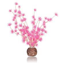 Biorb Bonsai Ball Plant This beautiful bright pink plant will add a splash of colour to your aquarium. Suitable for all Biorb Aquariums Dimensions 130 x 70 x180 Part Number 55067