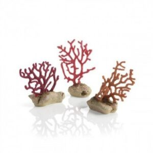 Biorb Sea Whips Set Create a striking underwater scene with the colour BiOrb Sea Whips Set. Inspired by natural soft corals found throughout the oceans of the world, these attractive Sea Whips will add interest and colour to any aquarium. Set of three Size 200 x 40 x 110 Part Code 72677
